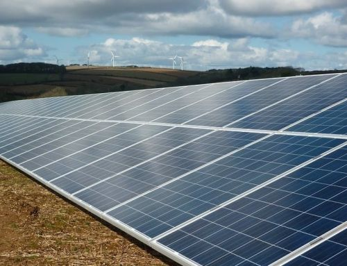 8 MW Solar Farm Development